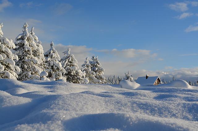 blog-pix-snow-2